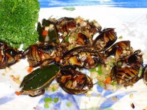 Fried Water Beetles